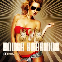 Drizzly House Sessions, Vol. 8 — сборник