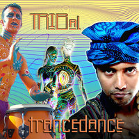Tribal Trance Dance — Various Music Mosaic Artists