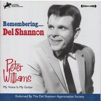 Remembering Del Shannon — сборник