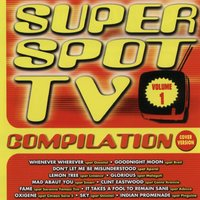 Super Spot TV Compilation Volume1 — сборник