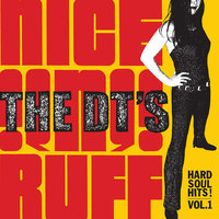 Hard Soul Hits! Vol.1 — The Dt's