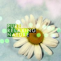 Pure Relaxing Nature — Pure Relaxation