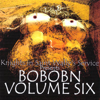 Knights In Saint Wally's Service Presents: Bobobn, Vol. 6 — сборник
