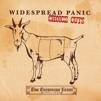 Choice Cuts: The Capricorn Years 1991-1999 — Widespread Panic