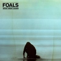 What Went Down — Foals
