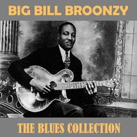 The Blues Collection — Big Bill Broonzy
