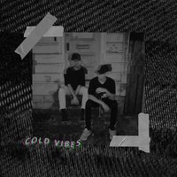 Cold Vibes — Plake