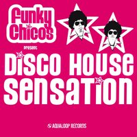 Funky Chicos present Disco House Sensation — сборник