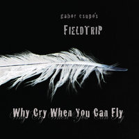 Why Cry When You Can Fly — Gabor Csupo's Fieldtrip