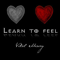 Learn to Feel — Vital Mezery