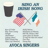 Sing An Irish Song — Avoca Singers