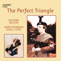 The Perfect Triangle — Richard Butler