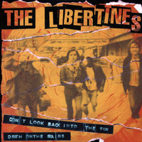 Don't Look Back Into The Sun — The Libertines