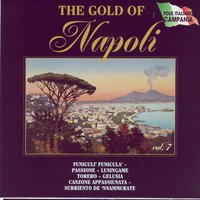 The Gold Of Napoli Vol 7 — Various Artists - Duck Records