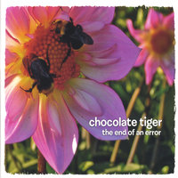 The End of an Error — Chocolate Tiger