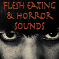 Flesh Eating and Horror Sounds — Sounds Visual