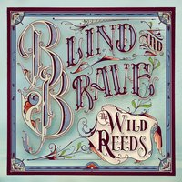 Blind and Brave — The Wild Reeds