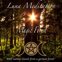 Magic Forest - Meditation & Relaxation Music with Nature Sounds — Luna Meditation
