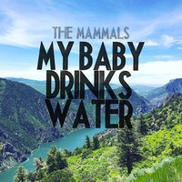 My Baby Drinks Water — The Mammals