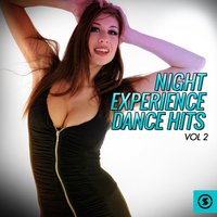 Night Experience Dance Hits, Vol. 2 — сборник