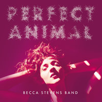 Perfect Animal — Becca Stevens Band