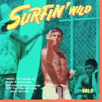 Surfin' Wild Vol.3, 16 Wild Instrumental Rockers — сборник