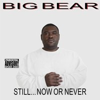 Still...Now or Never — BIG BEAR