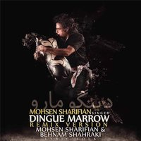 Dingue Marrow — Mohsen Sharifian & Behnam Shahraki