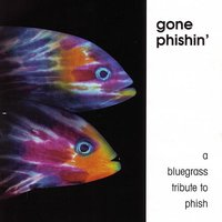 Gone Phishin: A Bluegrass Tribute — Pickin' On Series