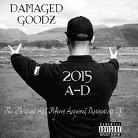 Two Thousand and Fifteen Acquired Destinations — Damaged Goodz