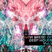 New Breed of Deep House Vol. 6 — сборник