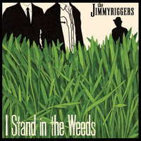 I Stand in the Weeds — The Jimmyriggers