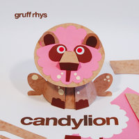 Somewhere Or Other — Gruff Rhys