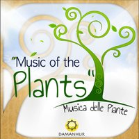 Music of the Plants (Musica Delle Piante) — Damanhur
