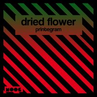 Printergram — Dried Flower
