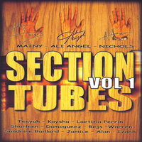 Section Tubes, Vol. 1 — сборник
