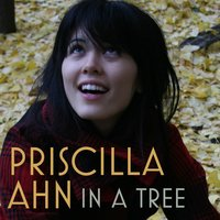 In A Tree — Priscilla Ahn