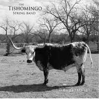 Dangerfield — Tishomingo String Band