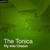 Fly Into Chasm — The Tonica