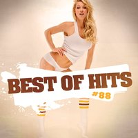 Best Of Hits Vol. 88 — Best Of Hits