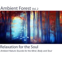 Ambient Forest, Vol. 2 (Ambient Nature Sounds for the Mind, Body and Soul) — Relaxation for the Soul