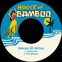 Seduction — Voices Of Africa