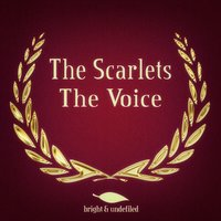The Voice — The Scarlets