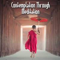 Contemplation Through Meditation — Echoes of Nature, Mindfulness Meditation Music Spa Maestro, Meditación