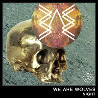 Night — We Are Wolves