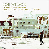 In The Safety of Sleep (Who You're Giving Your Love To) — Joe Wilson