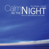De-Stress Series: Calm As The Night — PM Artist Sessions Project