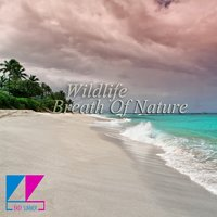 Breath of Nature — Wildlife