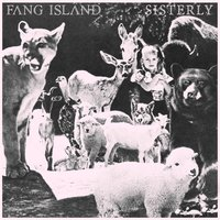 Sisterly - Single — Fang Island