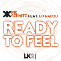Ready to Feel - Single — Pic Schmitz